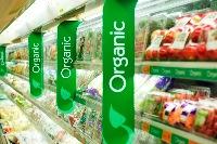 Знакомимся с продуктами современной органической «кухни»