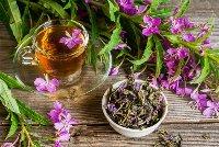Травяные чаи: от иван-чая до тибетского сбора
