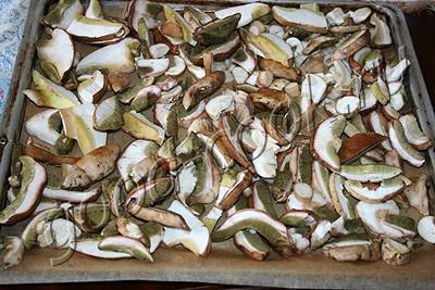 грибы сушеные