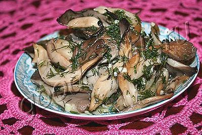 Вешенки грибы маринованные рецепт