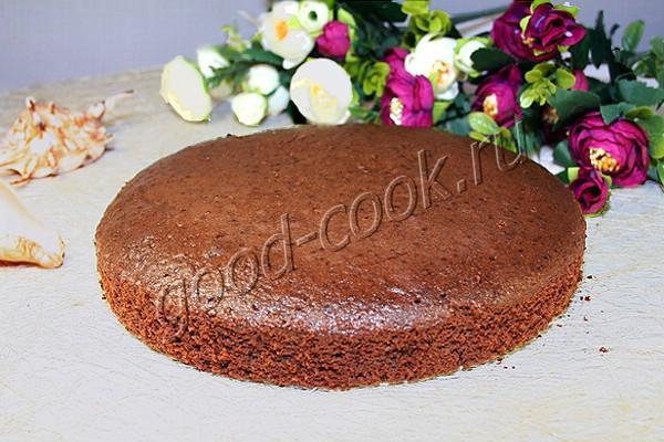 шоколадное масляно-бисквитное тесто