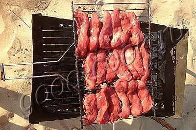 куриные шашлыки в сливовом соусе
