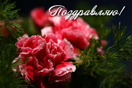 http://www.good-cook.ru/i/big/0/a/0a660ef5cfb83d343b13cd762d324ea4.jpg