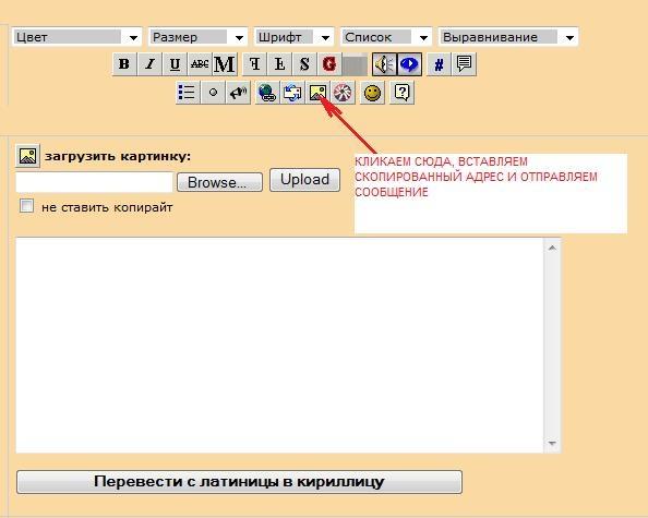 Итак, заливаем фото на сервер сайта, код, который выдаётся справа, НЕ копируем - 2