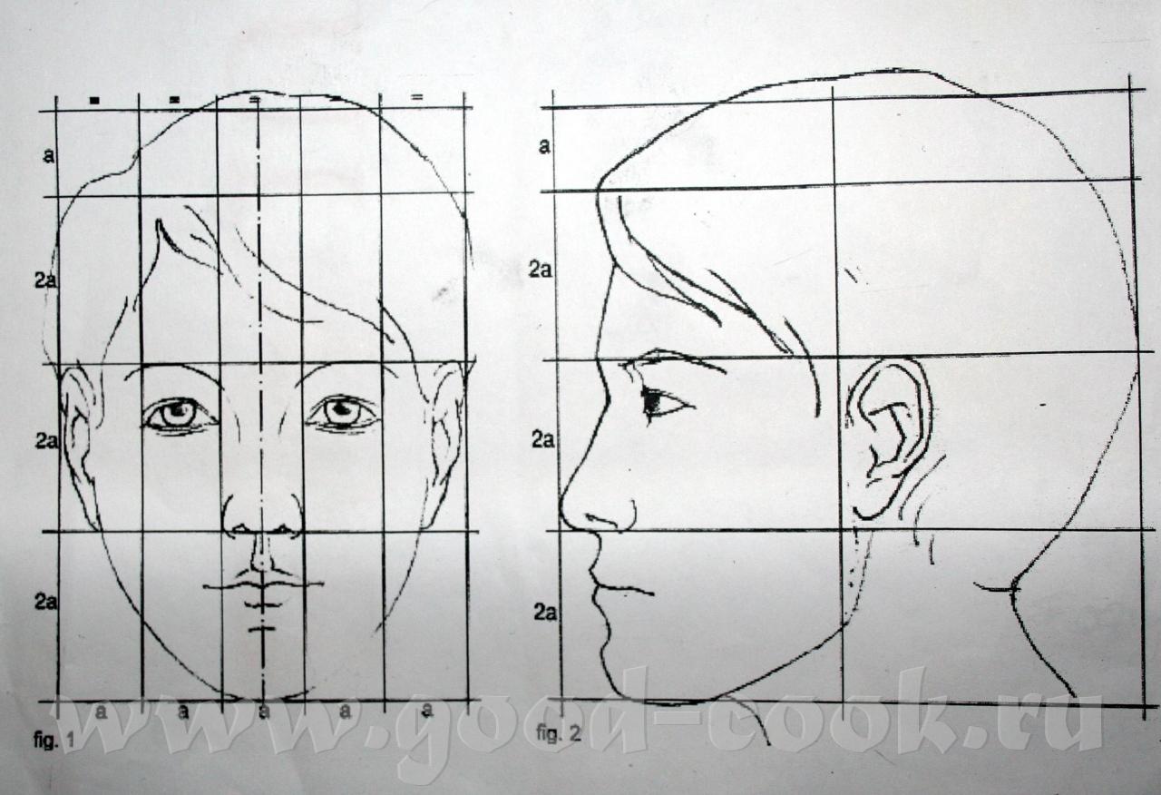 Как нарисовать портрет по схеме поэтапно