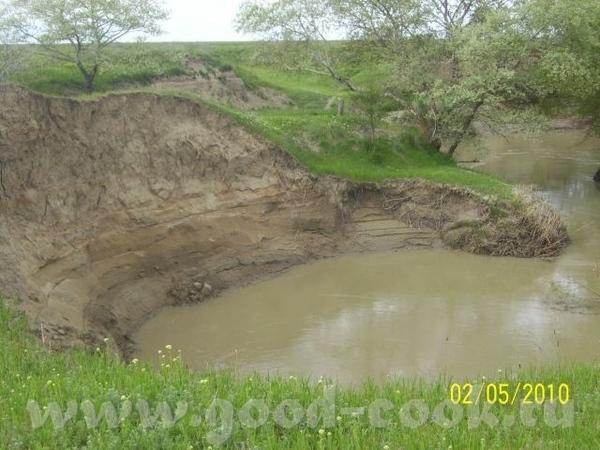 Степная речка, затерявшаяся в песках - 4