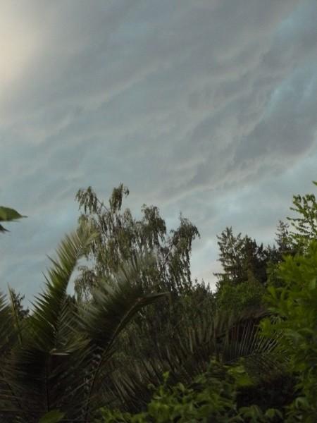 Ето у нас как-то гроза была, так небо поменялось буквально за 1 минуту - 2
