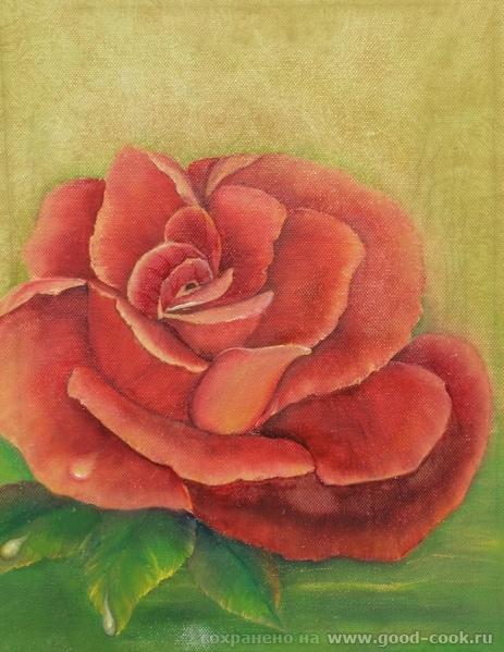 роза с выставки