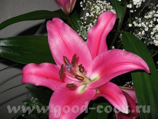 Девочки огромнищие за поздравления,добрые пожелания и прекрасные цветы(обалдеть какая красота )Очен...