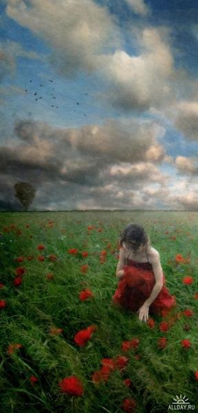 Magdalena Owll Для Светика - программа ART Frames, как обещала - 3