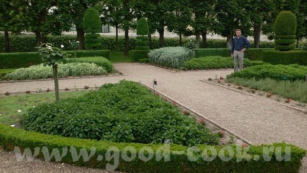 Но самым примечательным в данном замке был сад - 9
