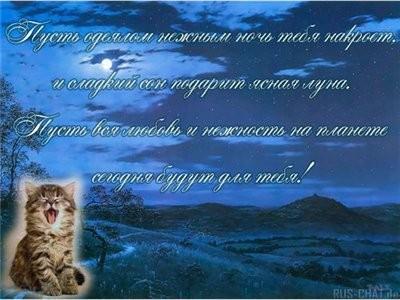 Ленусь, дорогуша - 2