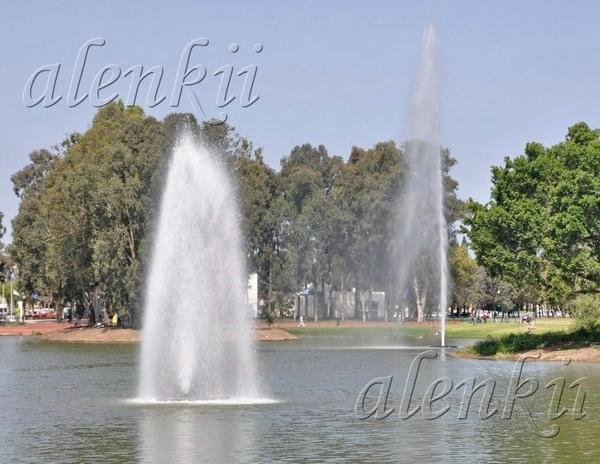 У ВОДЫ Парк Леуми (национальный парк) в Рамат-Гане - 2