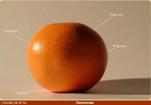 Белкин Крупняцки рефлекс это отраженный свет на предмете - 2