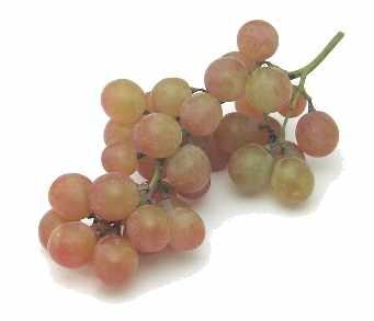 Золотая малина (golden raspberry) сорт малины красной Крыжовник (гусиная ягода - gooseberry) Кислая... - 3
