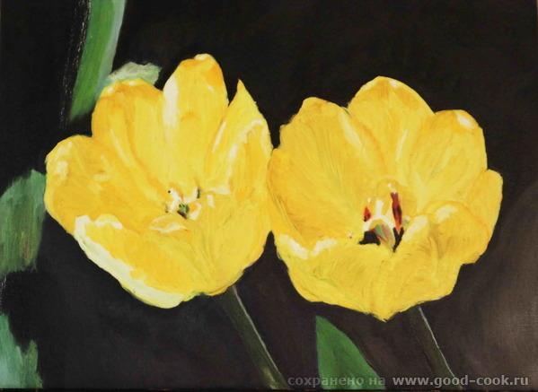 Тюльпаны с фото