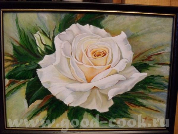 роза od-cook - 2