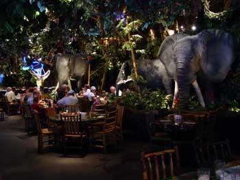 Ириш, то что ты описала - Rainforest cafe