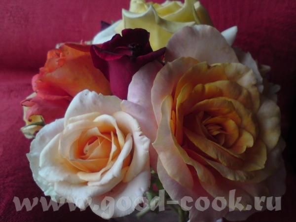 А это - просто для настроения, для вас всех - летние розы - 2