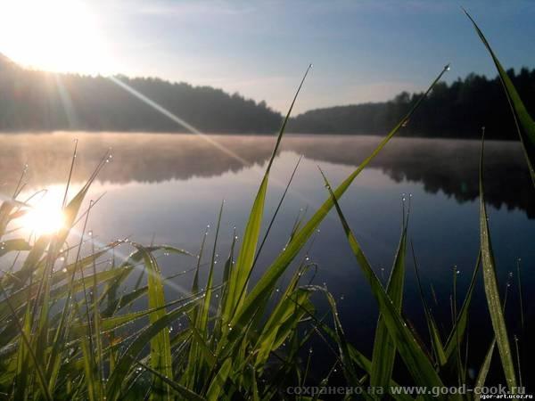 Утро на озере.