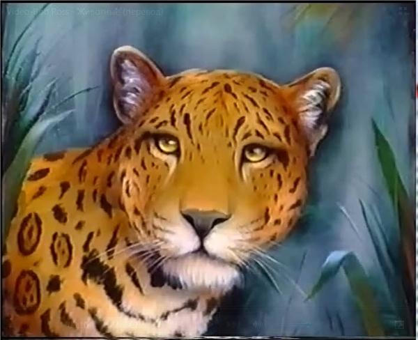"""Вот вам фильм с Лиськовым переводом """"Рисование животных по методу Б"""