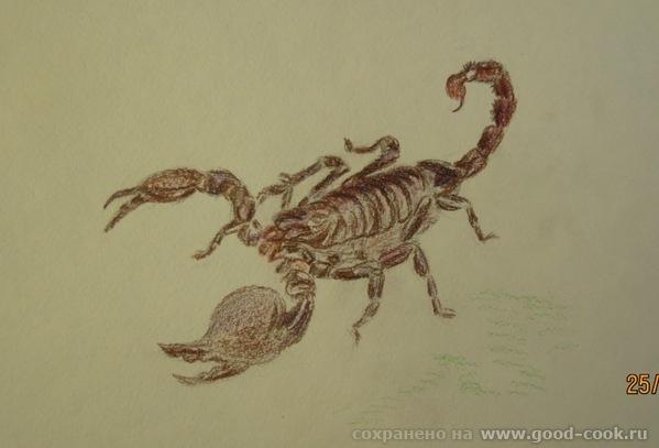 определение человеку под знаком скорпиона