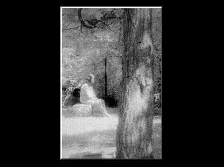 Снимок был сделан в ходе расследования на кладбище Холостяцкая Роща, возле Чикаго Обществом Исследо...