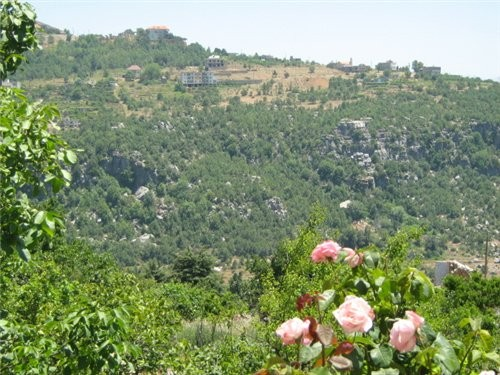 Девчата, спасибо, очень приятно А я вам Ливан принесла Это вид из окна нашего домика в горах Это то...