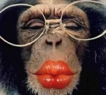 Вот нашла про обезьянок - 3