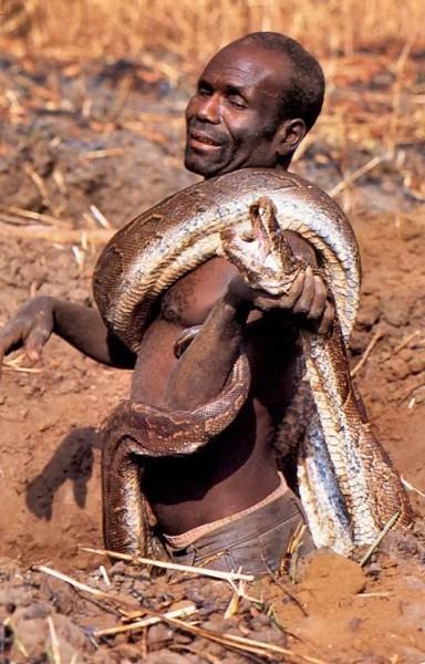 вот это язык змей - 2