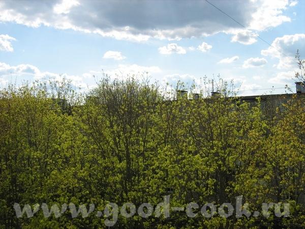 Вот, еще фотки, что видно из моего окна - 5