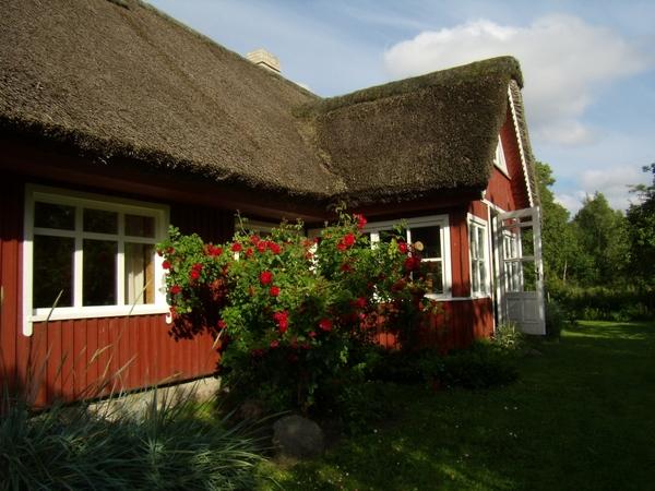 покажу некоторые фото из нашей поездки в Литву