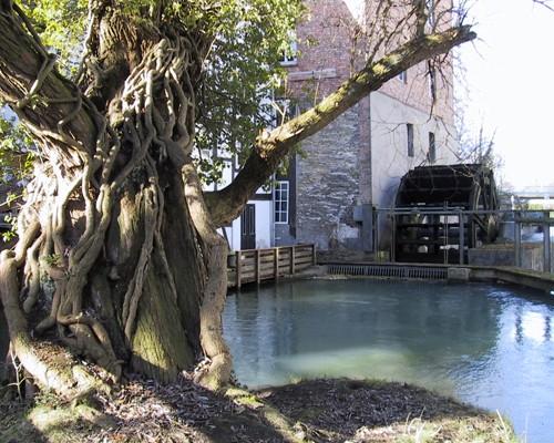 И еще сохранилась и до сих пор действуэт старая водяная мельница