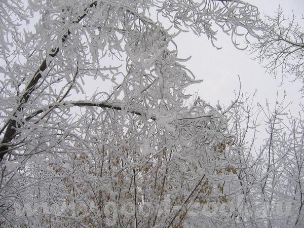 зимние узоры
