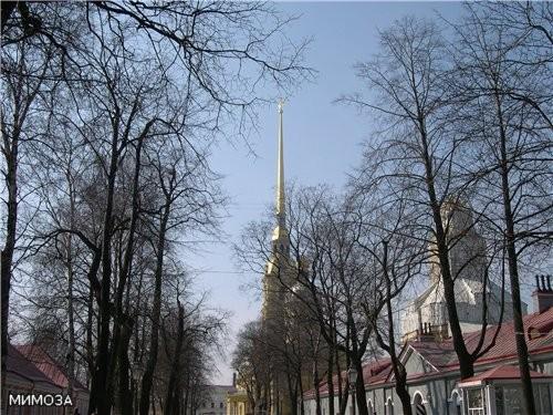 К Петропавловскому собору ведет центральная аллея