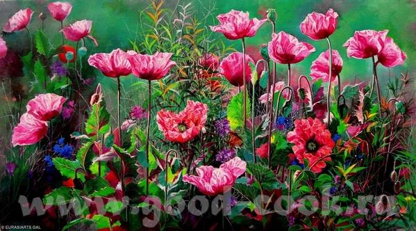 Mаки от (и другие цветы) Boli Libo музыка и цветы от Elizabeth Kawala Brian McCarthy John Ebner...