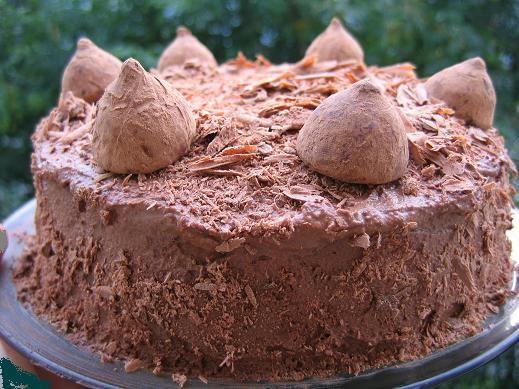 несу тебе трюфельный торт и Спасибу за него сегодня наверное день для тельцов удачный, ,потому что...