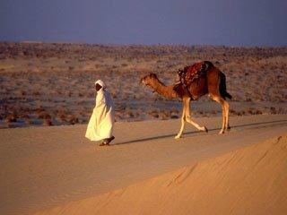 Арабская кухня - 14, кофе, кеБАБЫ и плоФ с рисом Арабская кухня -15 Ниже выкладываю дополненый и об...