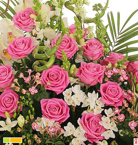 У тебя сегодня день рождения Желаем счастья и добра И вечной юности цветенья Улыбок, солнца и тепла...