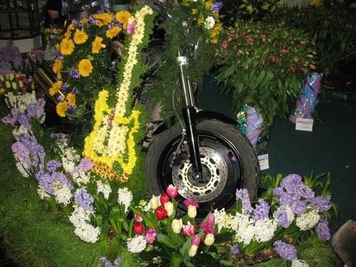 Царство роз Гитара из цветов Фонтан - 3