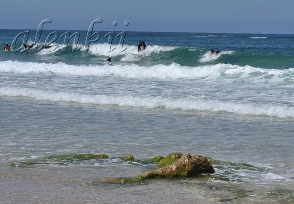 """Изумляют своей отвагой серфенгисты, которые бесстрашно заходят в море и """"ловят"""" волну - 2"""