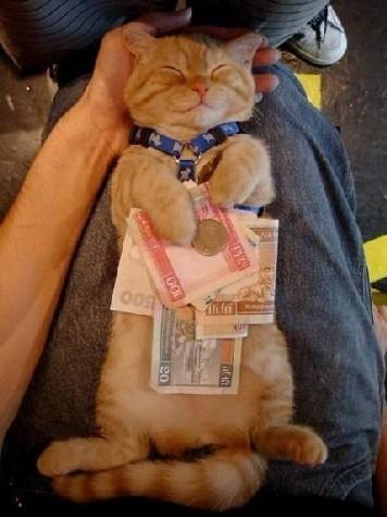Чтобы денег всегда хватало Чтобы друзья всегда были рядом Чтобы ничего не шокировало и не пугало Чт...