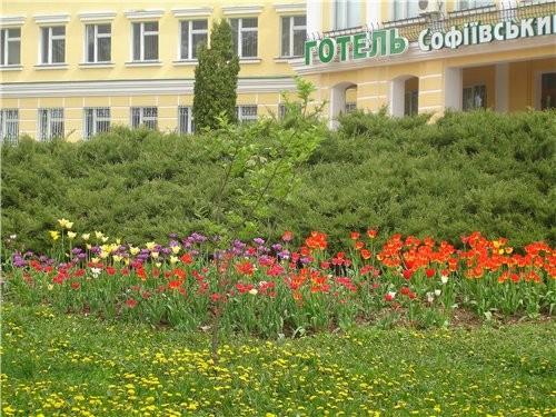 Девочки, да у вас уже весна в самор разгаре Как красиво Девочки, а мы вчера ездили в Умань в Софиев... - 2