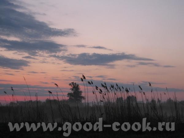 На выходных были на даче, ходили на рыбалку, а вокруг такая красота, что захотелось ею поделиться с...