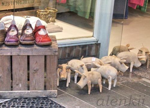 Перед входом в обувной магазин увидели таких забавных деревянных свинок