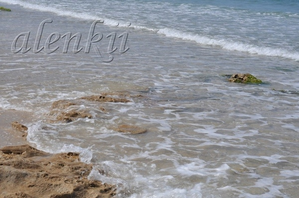 Своё тепло дарит ласковое солнце голубым волнам и золотому песку - 2