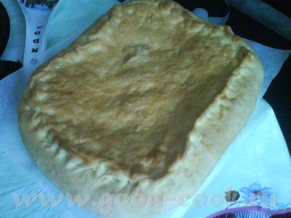 Наталья, я хочу тебе сказать огромное спасибо за тесто для пирогов - налепила целый противень с гри... - 2