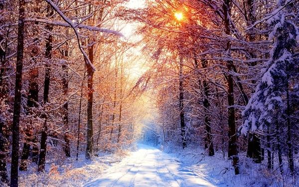 ВЕРНИСАЖ СОСТОИТ ИЗ ТРЕХ ЧАСТЕЙ Условия зимнего вернисажа: рисуем в любой технике и любыми материал...