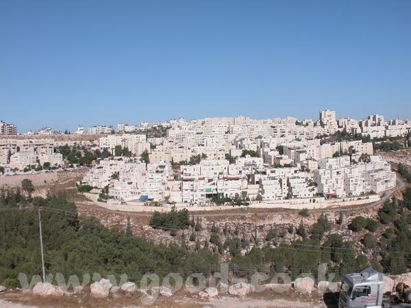 Весь Иерусалим выстроен из белого известняка или Иерусалимского камня (последние годы дома стали пр...