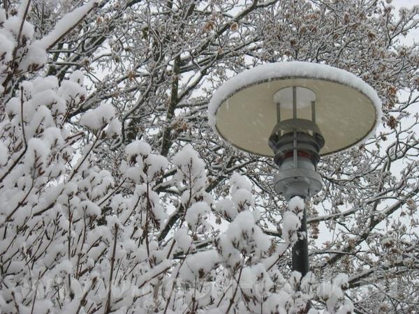 А сегодня у нас случилась зима - 3
